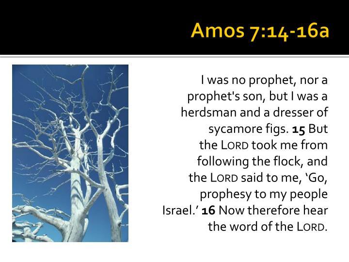 Amos 7:14-16a
