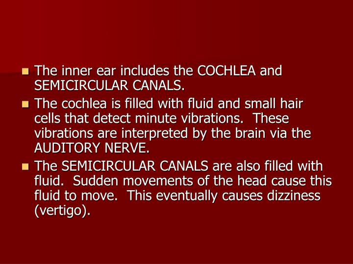 The inner ear includes the COCHLEA and SEMICIRCULAR CANALS.
