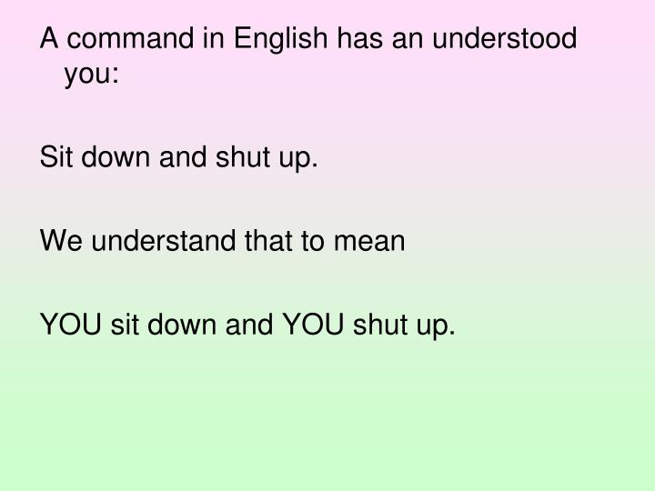 A command in English has an understood you: