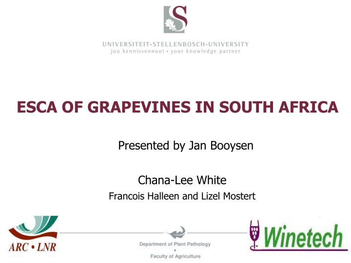 esca of grapevines in south africa n.