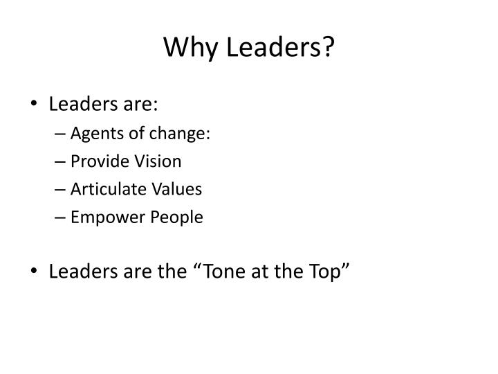 Why Leaders?