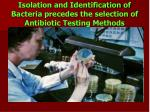 isolation and identification of bacteria precedes the selection of antibiotic testing methods