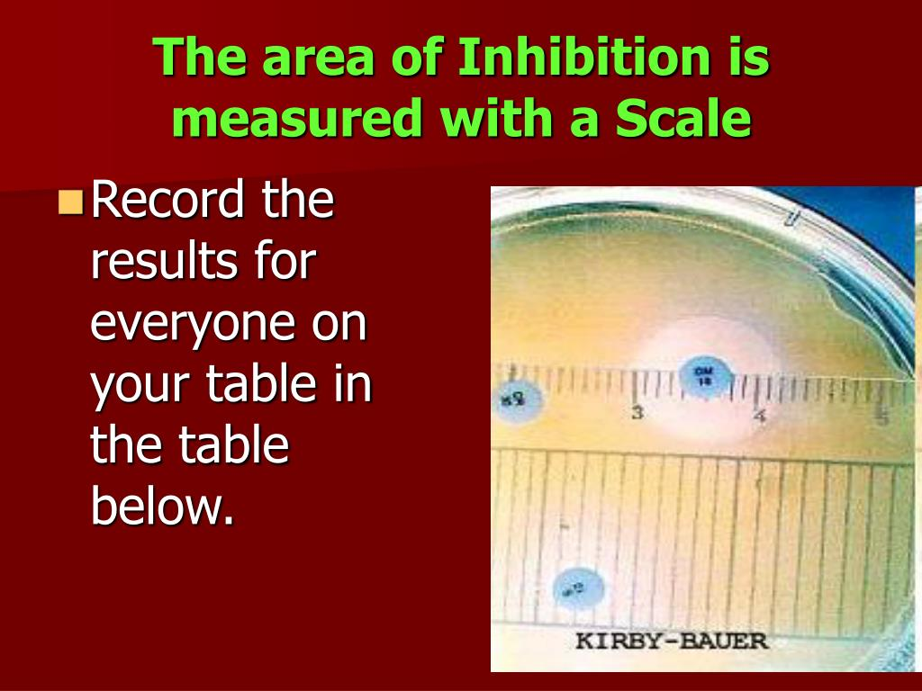 The area of Inhibition is measured with a Scale