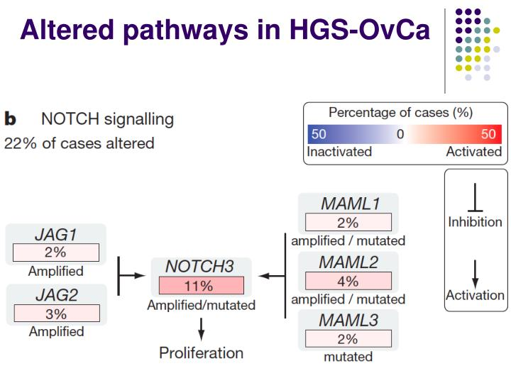 Altered pathways in HGS-