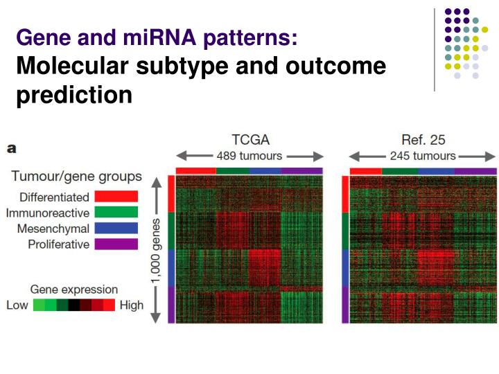 Gene and miRNA patterns: