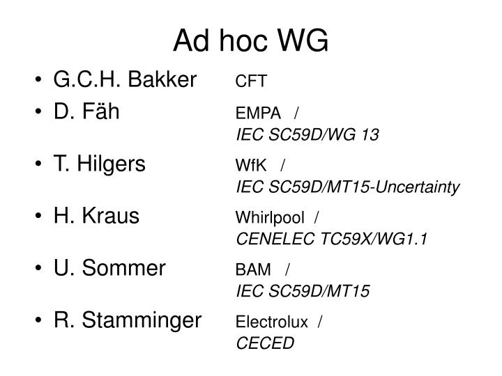 Ad hoc wg