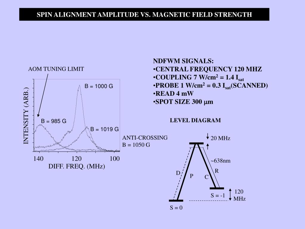 SPIN ALIGNMENT AMPLITUDE VS. MAGNETIC FIELD STRENGTH