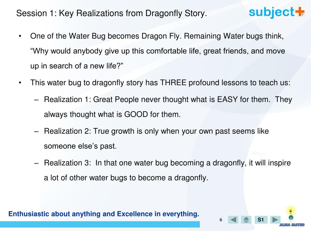 Session 1: Key Realizations from Dragonfly Story.