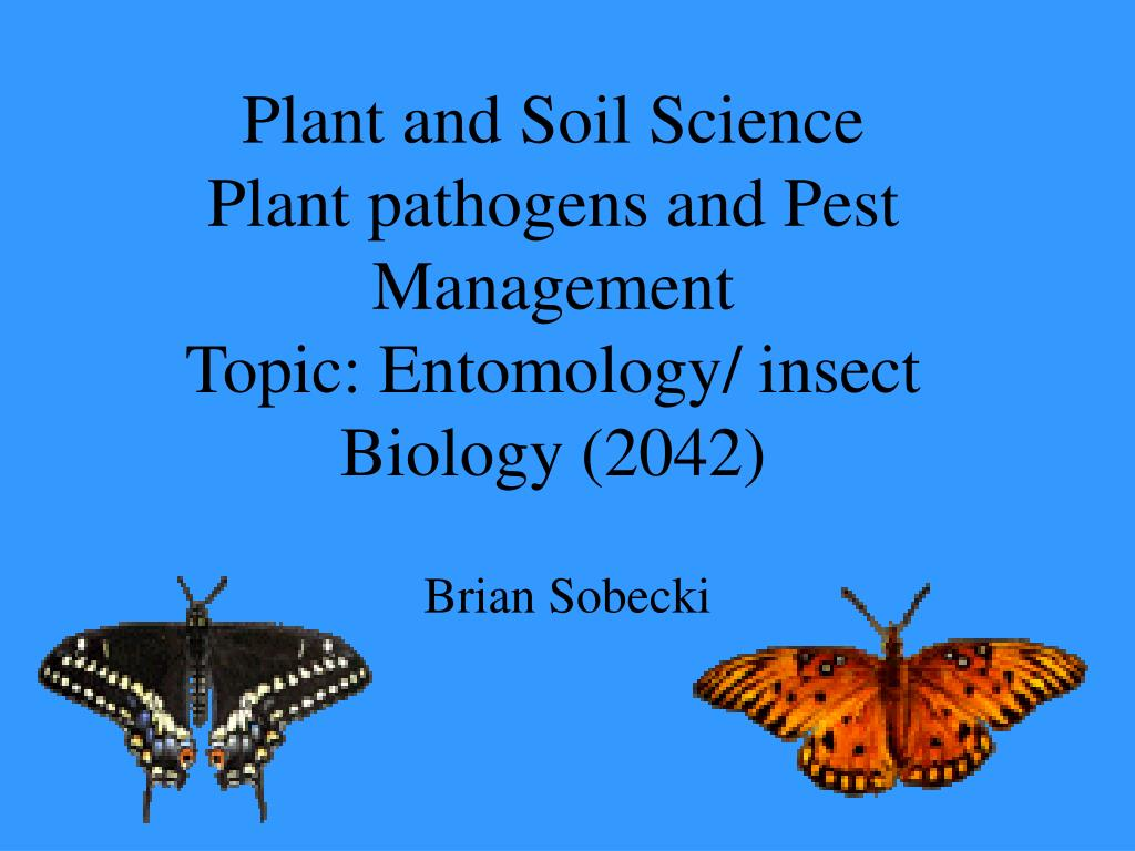 plant and soil science plant pathogens and pest management topic entomology insect biology 2042