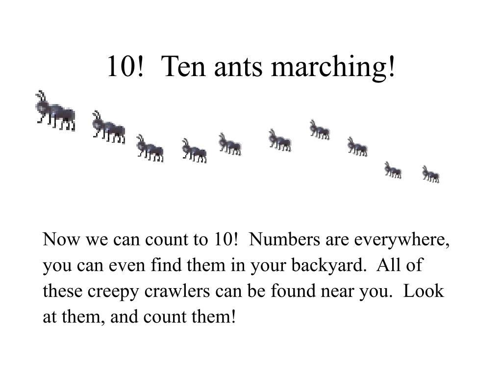 10!  Ten ants marching!