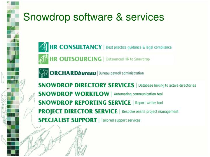 Snowdrop software & services