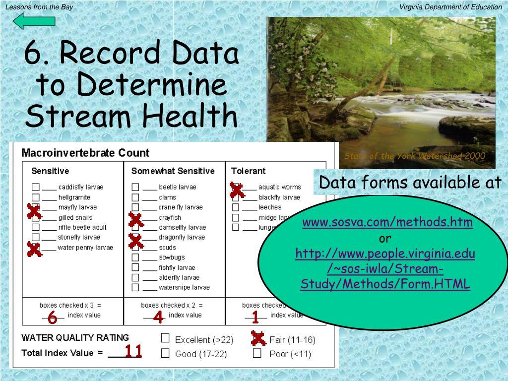 6. Record Data to Determine Stream Health