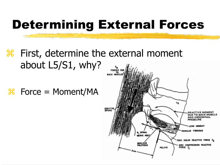 Determining External Forces