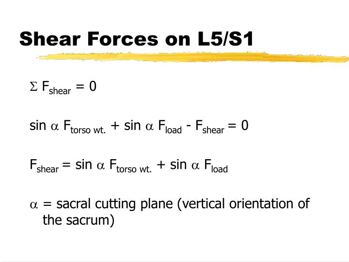 Shear Forces on L5/S1