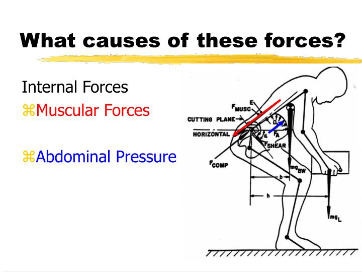 What causes of these forces?