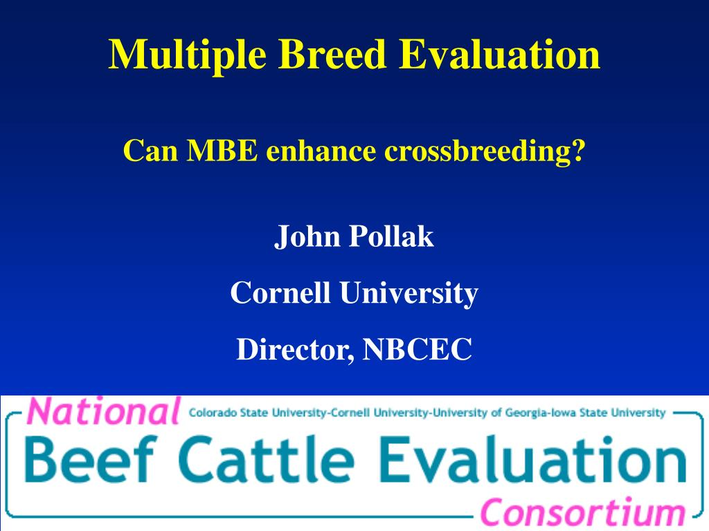 multiple breed evaluation can mbe enhance crossbreeding l.