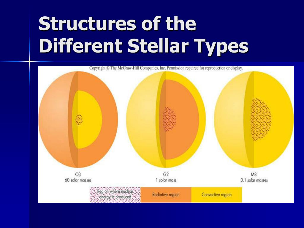 Structures of the Different Stellar Types