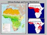 african ecology and vector distribution