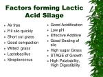 factors forming lactic acid silage