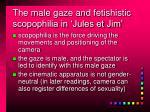 the male gaze and fetishistic scopophilia in jules et jim