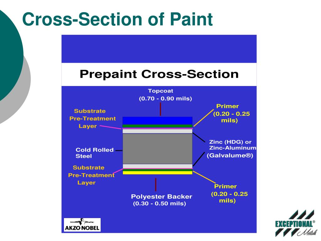 Cross-Section of Paint