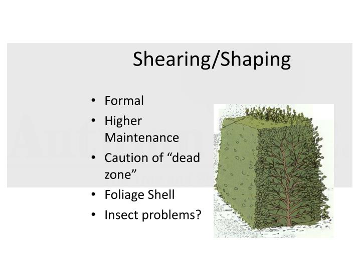 Shearing/Shaping