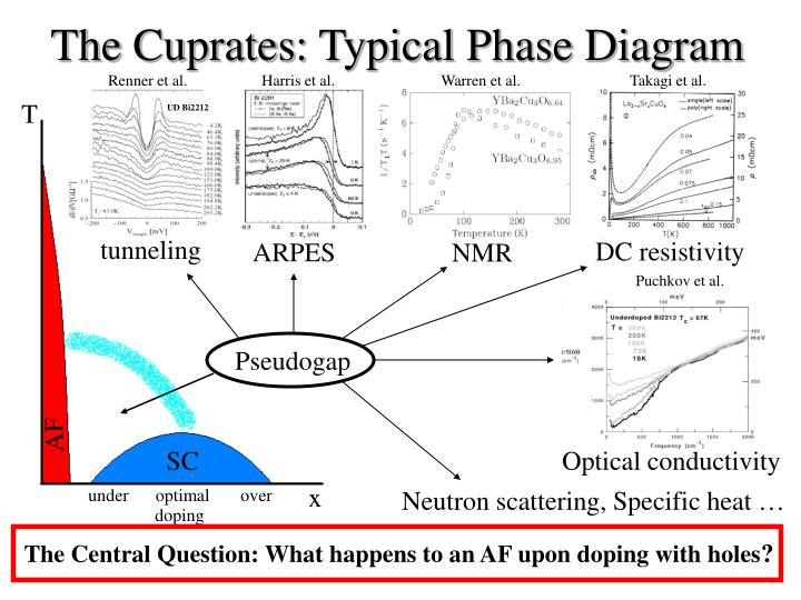The cuprates typical phase diagram