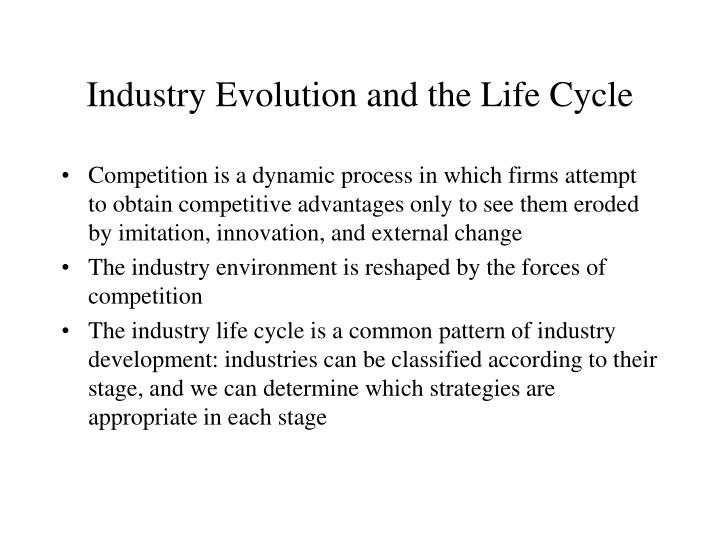 Industry Evolution and the Life Cycle