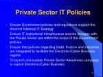 private sector it policies
