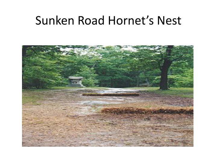 Sunken Road Hornet's Nest
