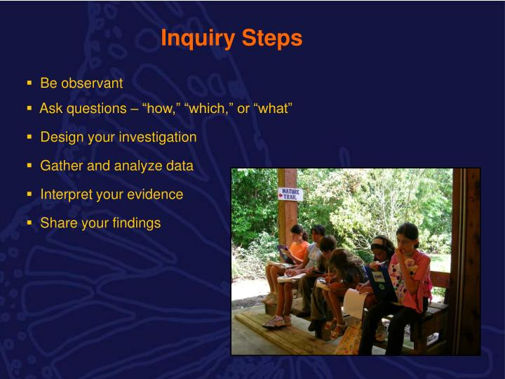 Inquiry Steps