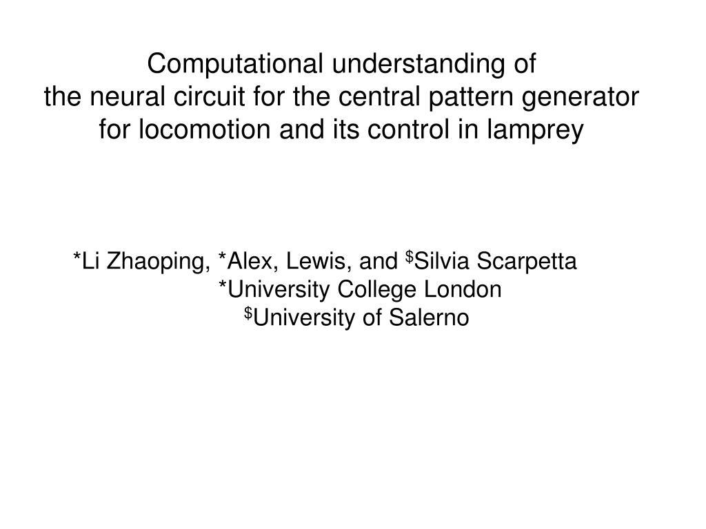 Computational understanding of