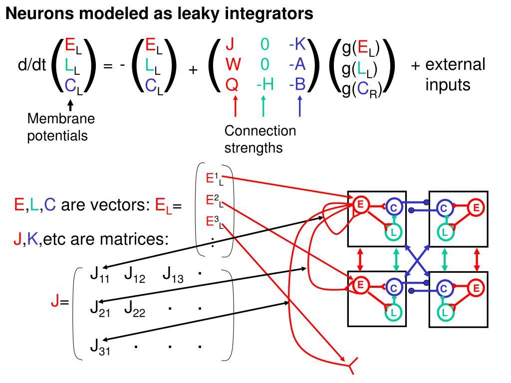 Neurons modeled as leaky integrators