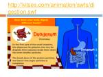 http kitses com animation swfs digestion swf3