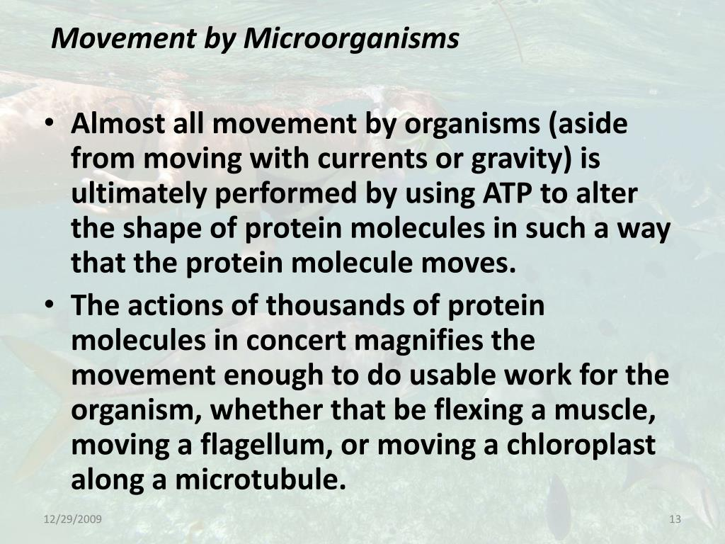 Movement by Microorganisms