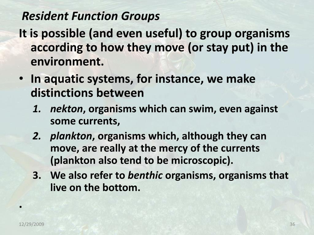 Resident Function Groups