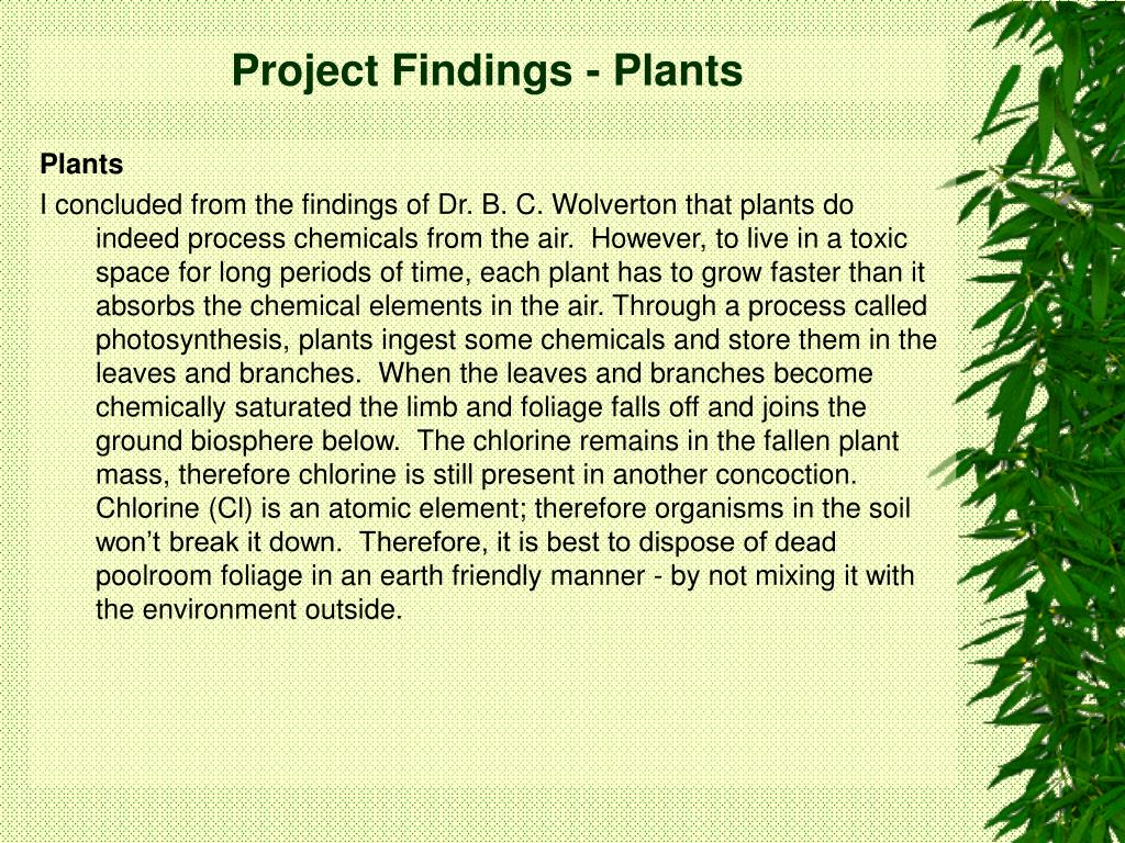 Project Findings - Plants