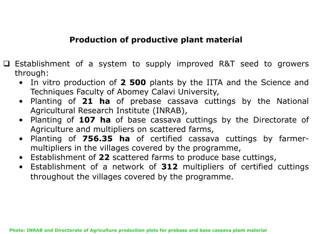 Production of productive plant material