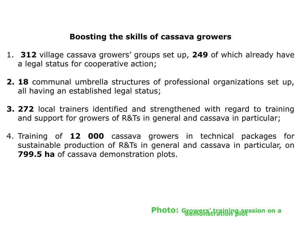 Boosting the skills of cassava growers