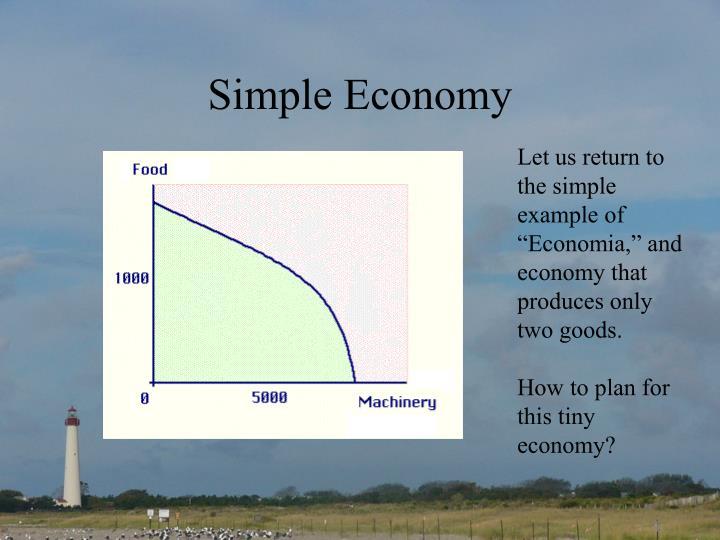 Simple Economy