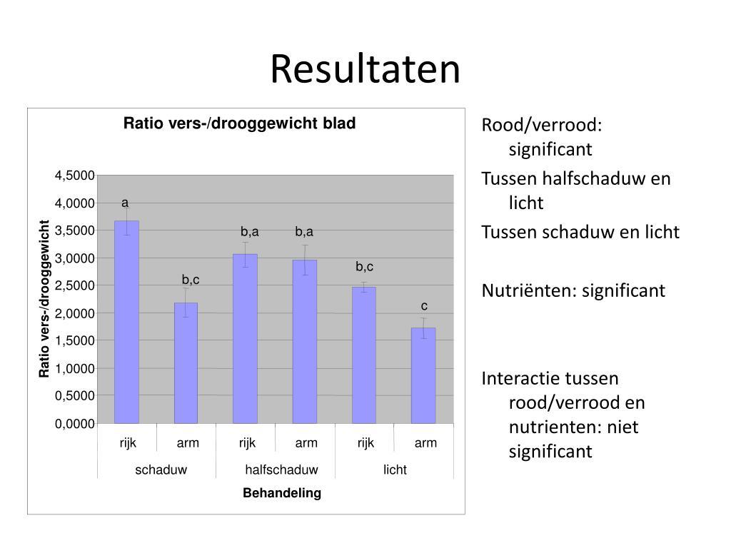 Ratio vers-/drooggewicht blad