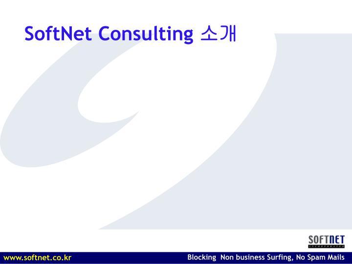 Softnet consulting