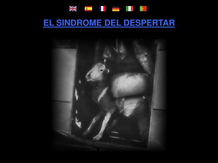 EL SINDROME DEL DESPERTAR