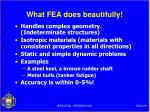 what fea does beautifully