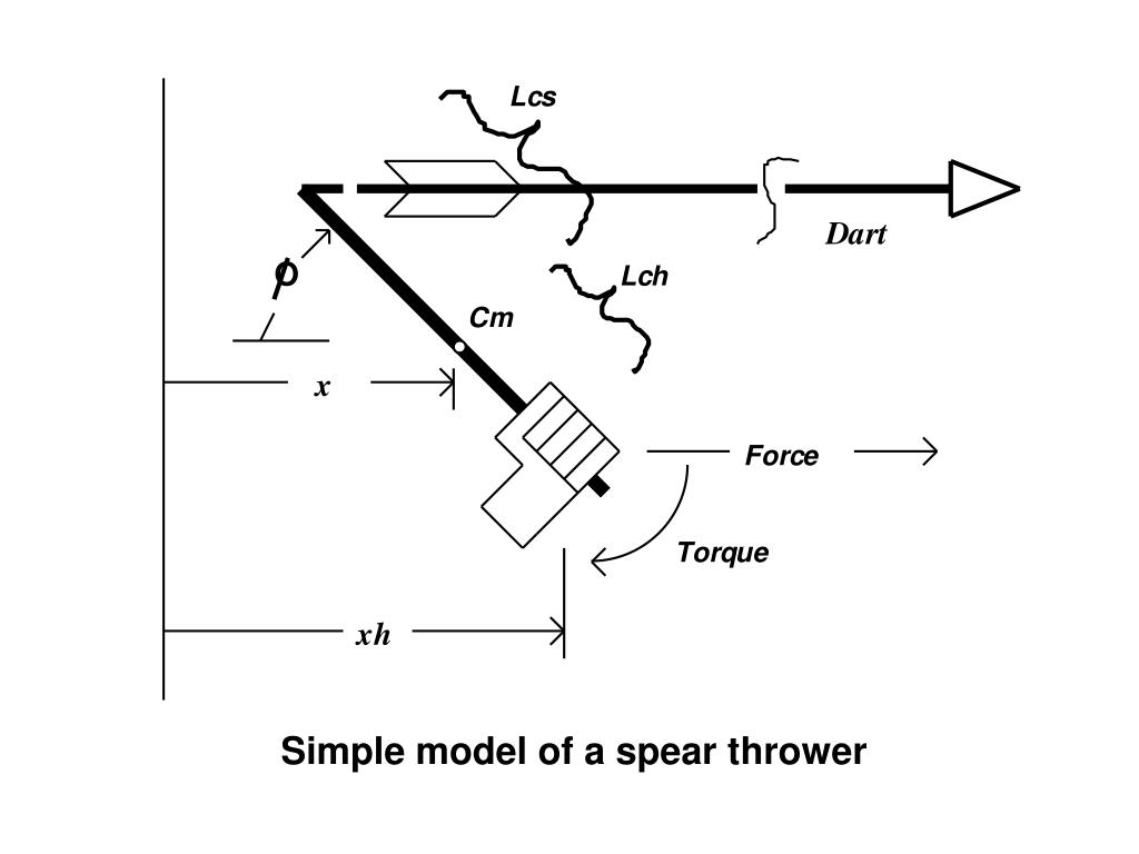 Simple model of a spear thrower