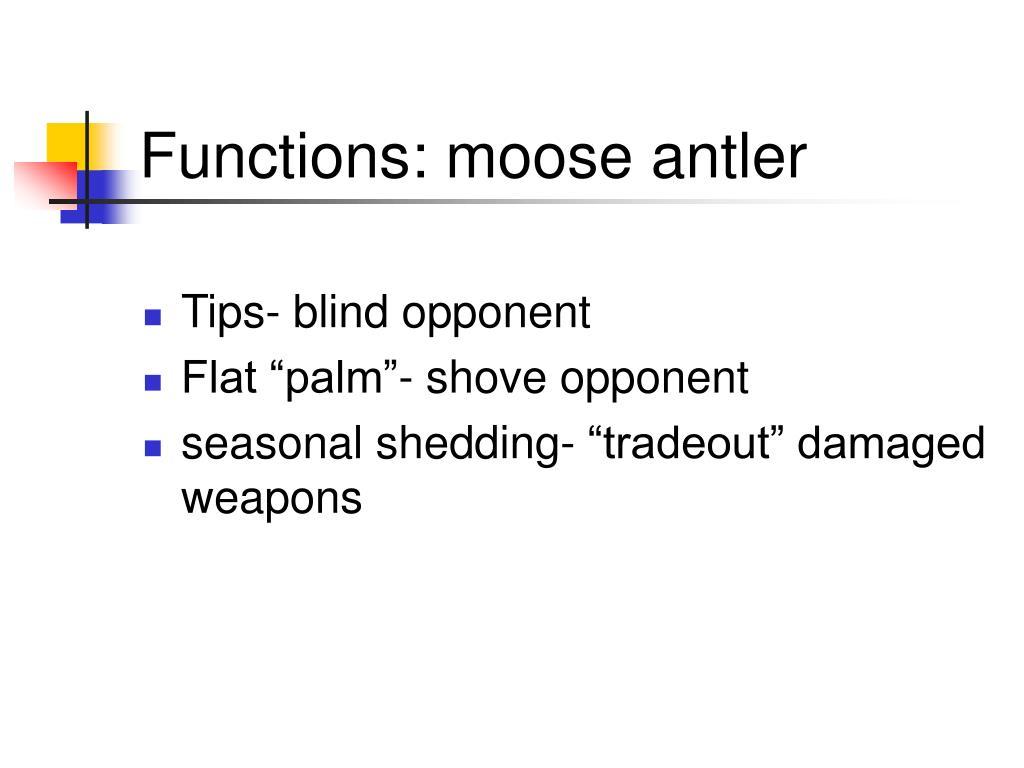 Functions: moose antler