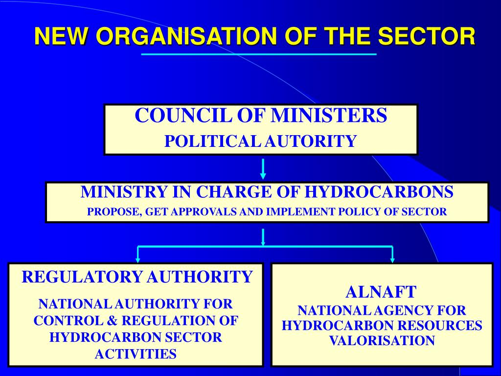 NEW ORGANISATION OF THE SECTOR
