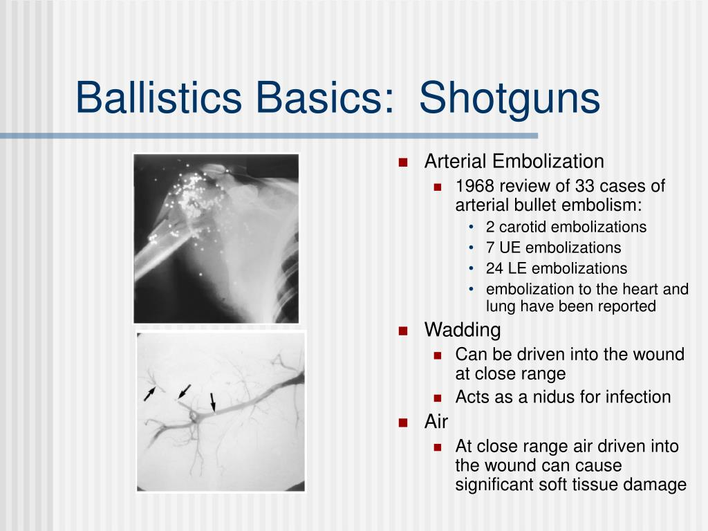 Ballistics Basics:  Shotguns