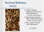 terminal ballistics velocity