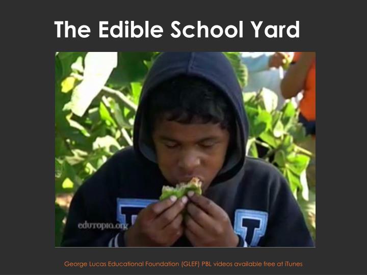 The Edible School Yard